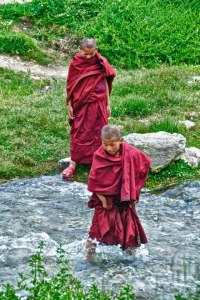Young Monks @ Play